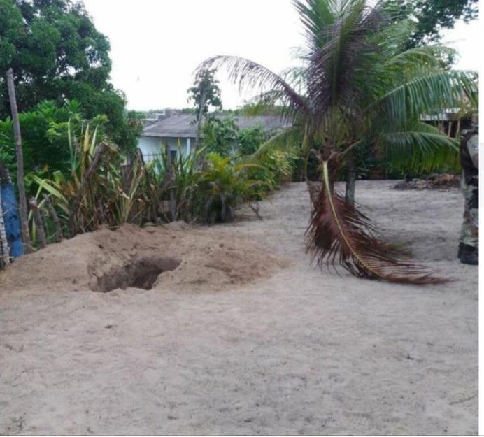 Casal é achado em cova no quintal da própria casa na Bahia; mulher foi estuprada antes de ser morta